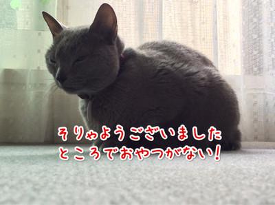 Image_11